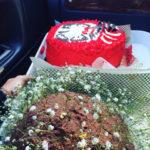 祝いダルマケーキ
