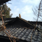広島旅行の写真4