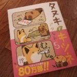 タヌキとキツネ 5巻